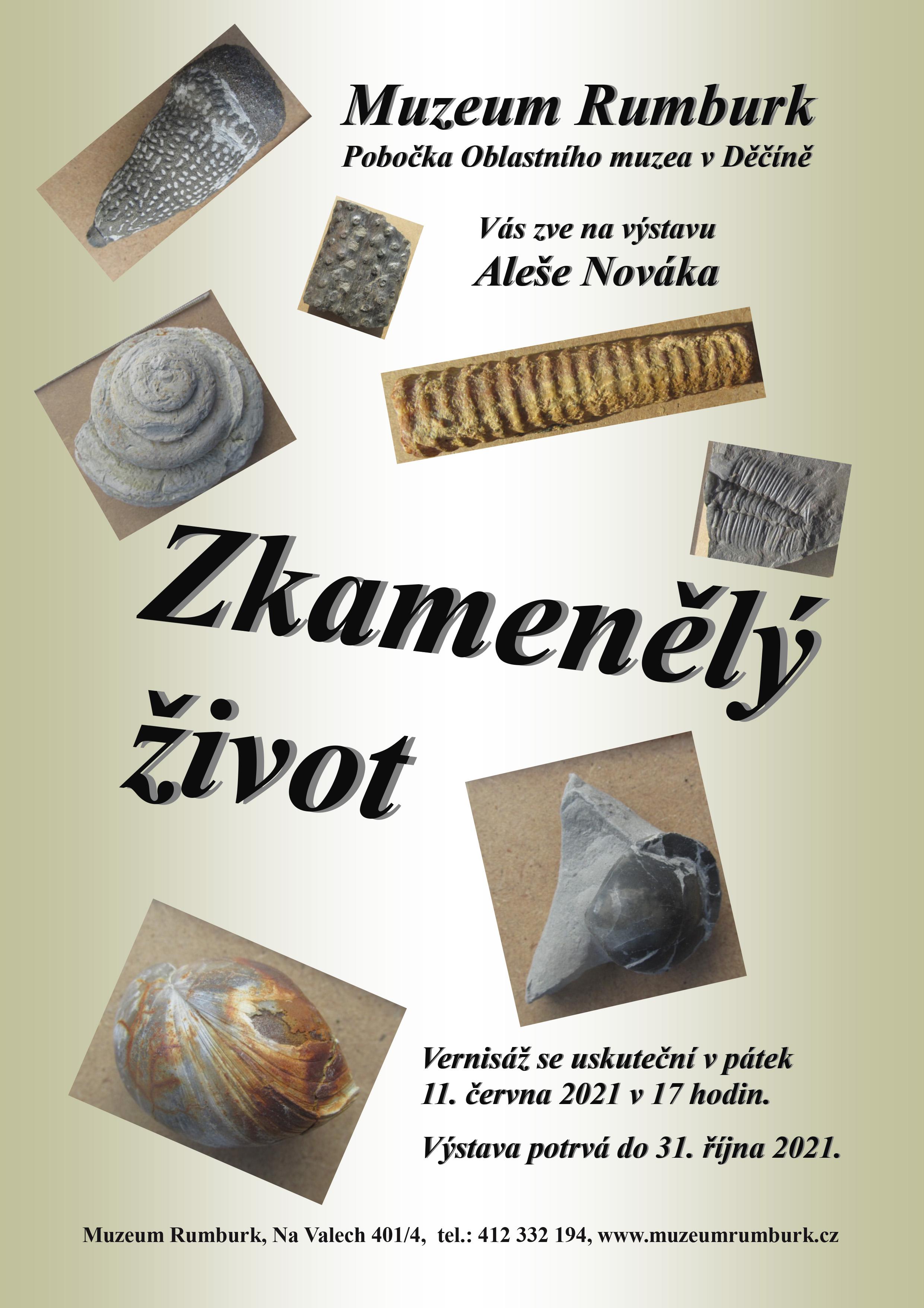 Zkamenělý život